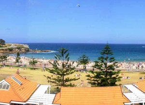Surfside Backpackers Coogee Beach
